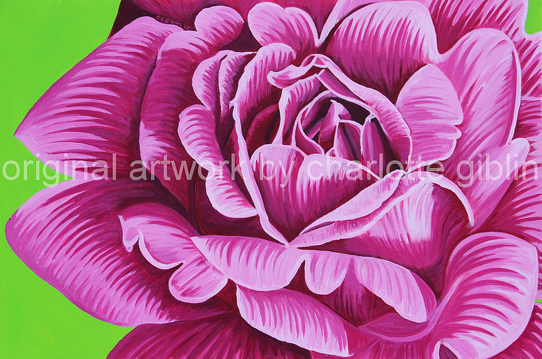 There's nothing fragile about THIS rose (pink)