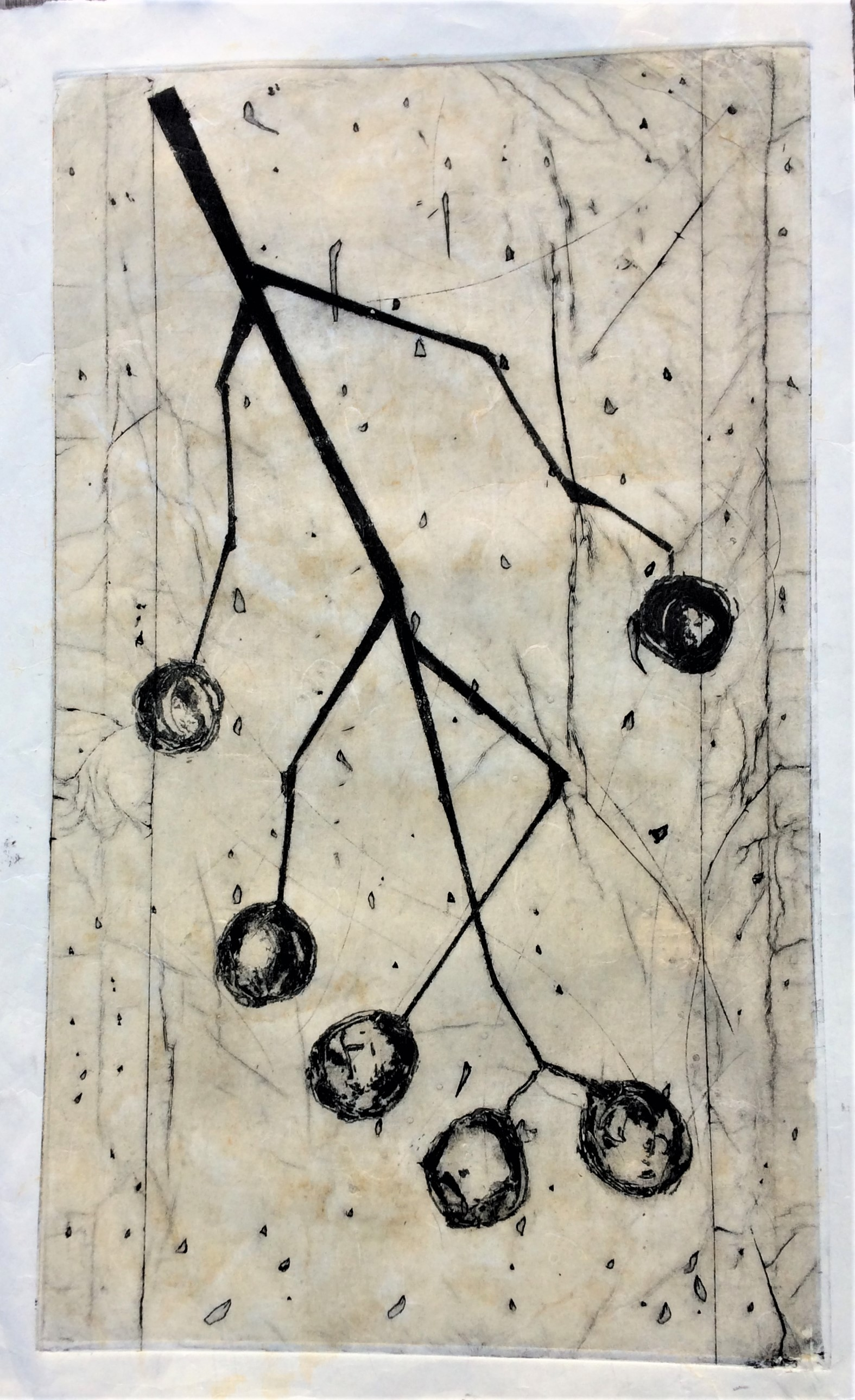 <strong>Cherries<strong> Collagraph