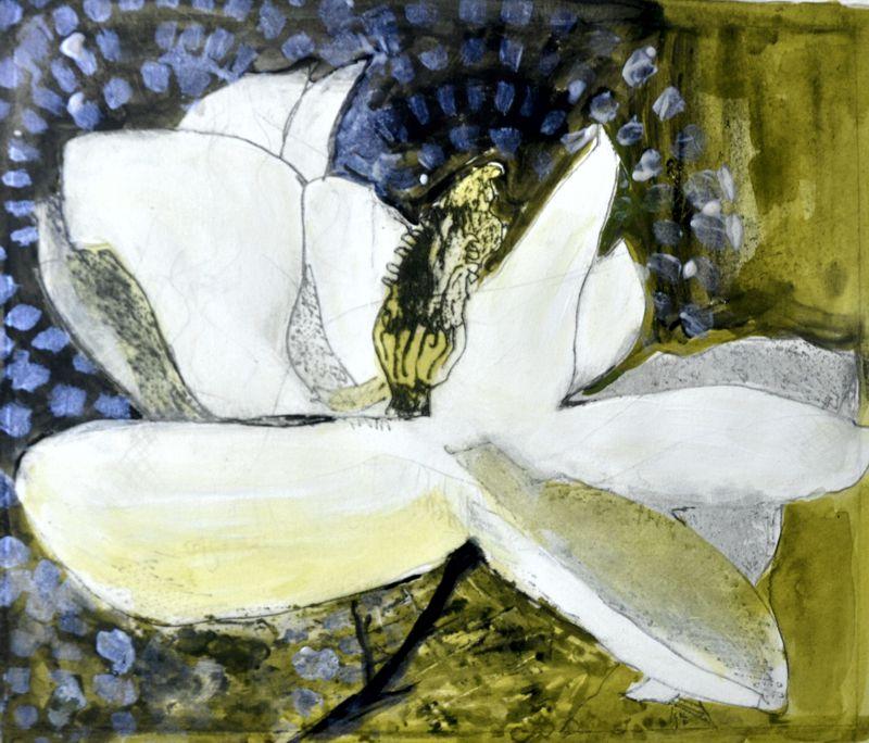 Magnolia Print - done on perspex Kay de Blaauw Size 28 x 20 cm